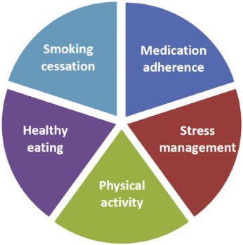 Home-Based Cardiac Rehabilitation: A Scientific Statement
