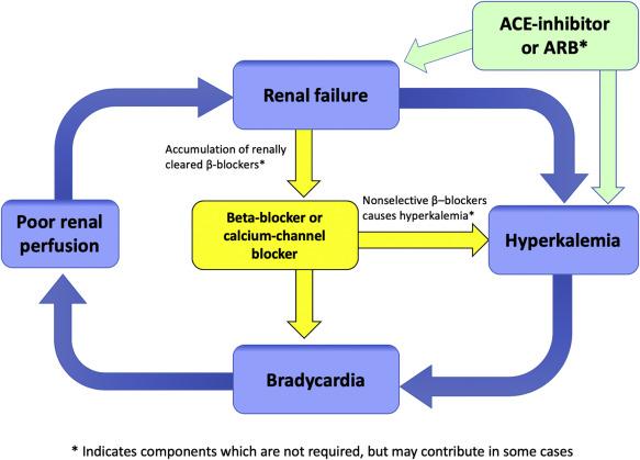 Brash Syndrome Bradycardia Renal Failure Av Blockade Shock And Hyperkalemia Sciencedirect