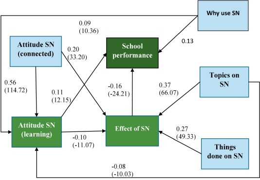 School performance, social networking effects, and learning of