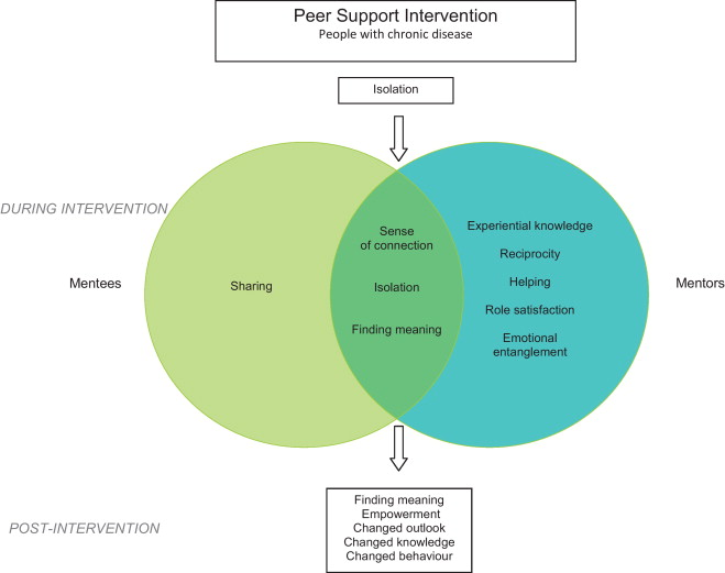 The Experience And Impact Of Chronic Disease Peer Support