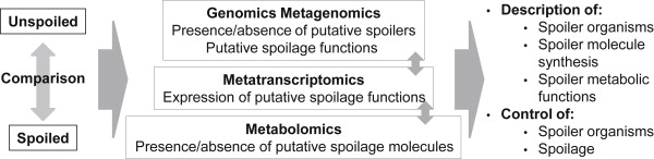 Bacterial spoilers of food: Behavior, fitness and functional