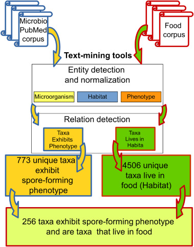 Text mining tools for extracting information about microbial