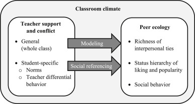 Social dynamics in the classroom: Teacher support and