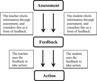 Teachers' views on the use of assessment for learning and