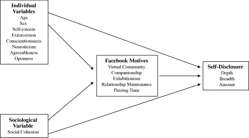 Facebook self-disclosure: Examining the role of traits, social