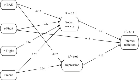 Structural Relations Between Brain Behavioral Systems Social