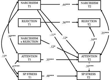 Narcissistic adolescents' attention-seeking following social