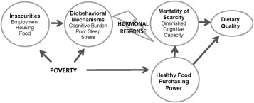 Biobehavioral Factors That Shape Nutrition In Low Income Populations A Narrative Review Sciencedirect