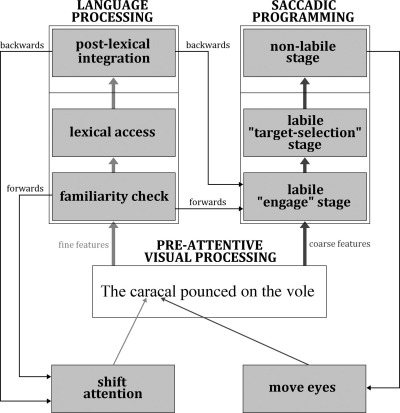Eye movements in reading and information processing: Keith Rayner's