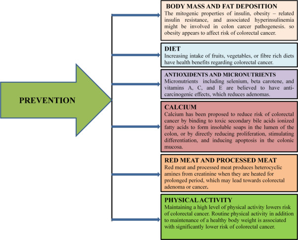 Predictive And Prognostic Biomarkers In Colorectal Cancer A Systematic Review Of Recent Advances And Challenges Sciencedirect