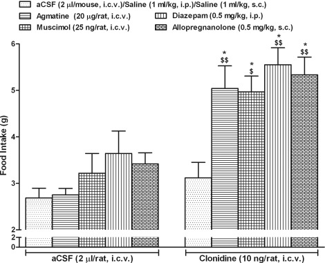 Acute orexigenic effect of agmatine involves interaction between