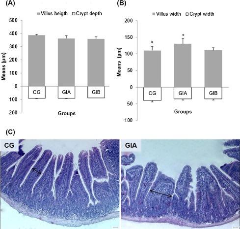 enterobius vermicularis cdc endometrium rák gpc 2021