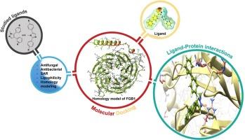 In Vitro Screening Homology Modeling And Molecular Docking