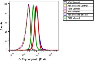 C-phycocyanin to overcome the multidrug resistance phenotype