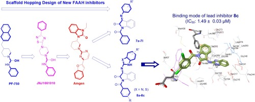 Scaffold hopping-guided design of some isatin based rigid analogs as