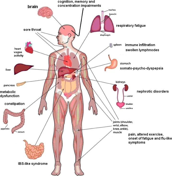 Chronic fatigue syndrome (CFS): Suggestions for a