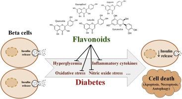 diabetes tipo 1, shock de insulina