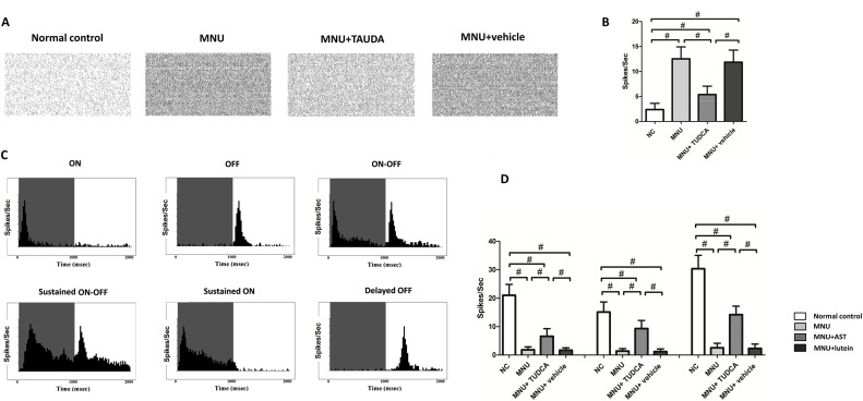 Subcutaneous delivery of tauroursodeoxycholic acid rescues the cone