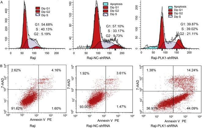 Bioinformatic analysis of differentially expressed genes and