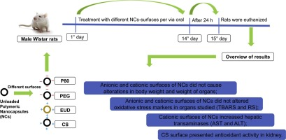 Cationic and anionic unloaded polymeric nanocapsules