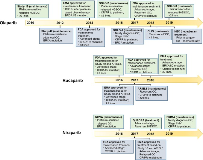 Therapeutic Applications Of Parp Inhibitors In Ovarian Cancer Sciencedirect