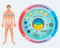 Prostatitis és antigén