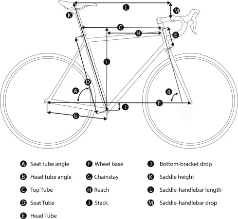 Does Changing The Bike Frame Influence Pedal Force Pattern In