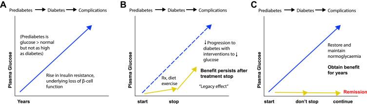diabetes action now 2004 ram