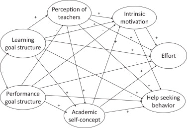 School goal structure: Associations with students