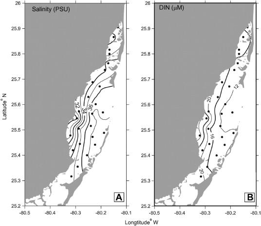Sources of dissolved inorganic nitrogen in a coastal lagoon adjacent