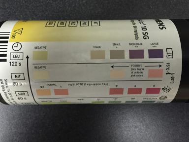 Determining False Positive Rates of Leukocyte Esterase