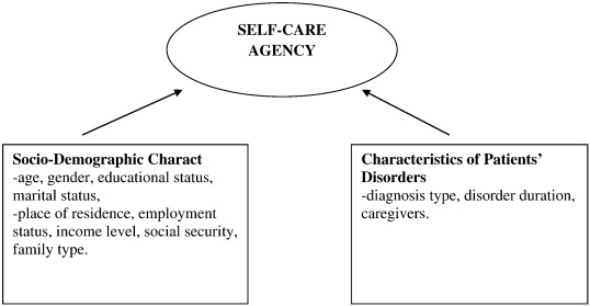what level of self care agency in mental illness the factors