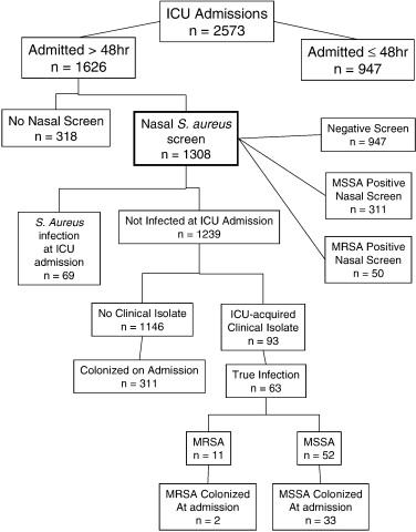 Epidemiology Of Staphylococcus Aureus Nasal Colonization And