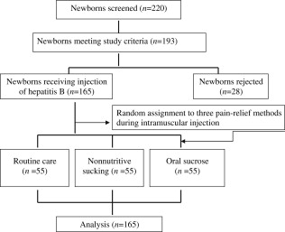 Nonnutritive Sucking and Oral Sucrose Relieve Neonatal Pain