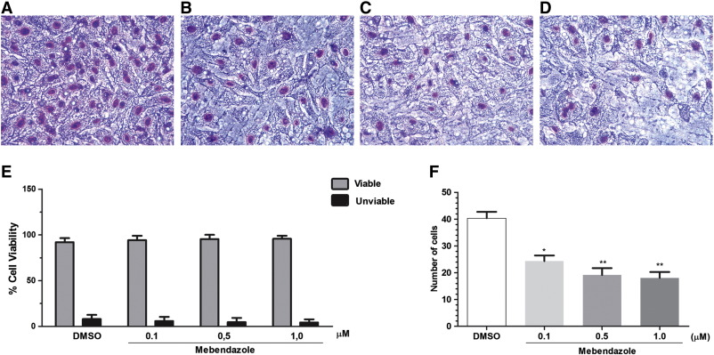 The Anthelmintic Drug Mebendazole Inhibits Growth Migration And Invasion In Gastric Cancer Cell Model Sciencedirect