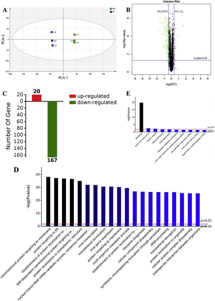 Integrative transcriptomics, proteomics, and metabolomics data