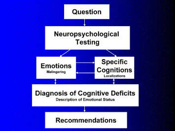 Ask Expert What Is Neuropsychological >> A Friendly Critique Of Neuropsychology Facing The Challenges Of Our