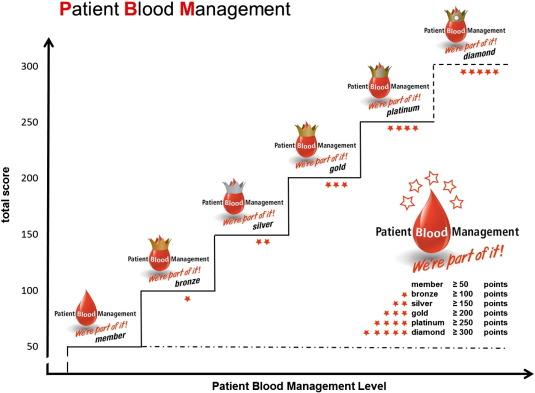 Patient Blood Management Bundles to Facilitate Implementation