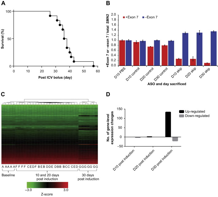 Rescue of gene-expression changes in an induced mouse model of