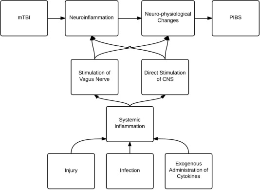 A review of the neuro and systemic inflammatory responses in post neuroinflammation is caused either by direct insult or via systemic inflammatory stimulation publicscrutiny Choice Image