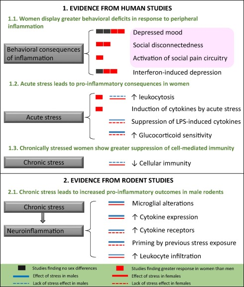 Gender Differences In Depression Appear >> Sex Differences In The Neuro Immune Consequences Of Stress Focus On