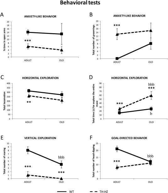Premature aging in behavior and immune functions in tyrosine