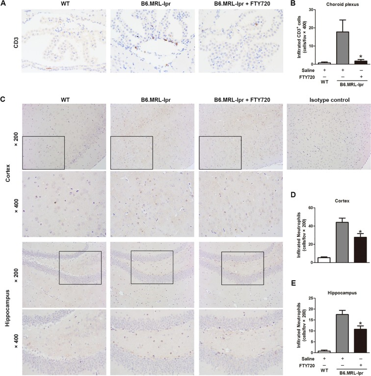 FTY720 attenuates behavioral deficits in a murine model of