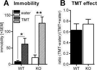 Deficiency of the immunoproteasome subunit β5i/LMP7 supports