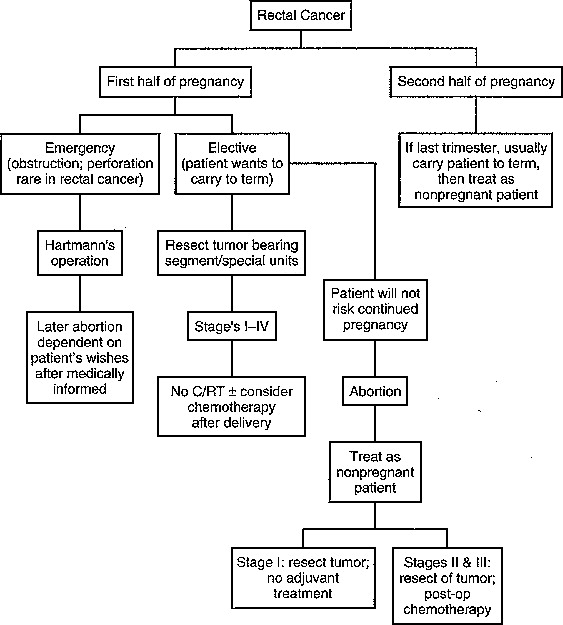 Cancer Of The Colon Rectum And Anus During Pregnancy The Surgeon S Perspective Sciencedirect