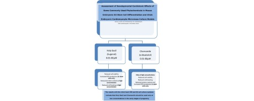 Assessment of developmental cardiotoxic effects of some