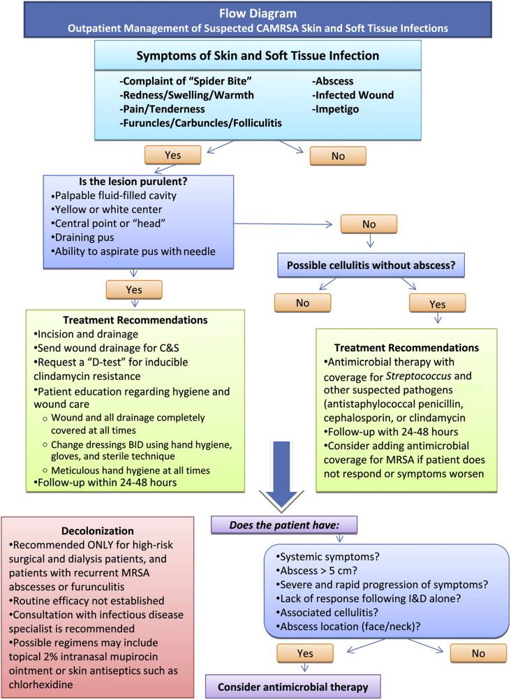 1 s2.0 S0891524510001173 gr1 outpatient management of community associated methicillin resistant