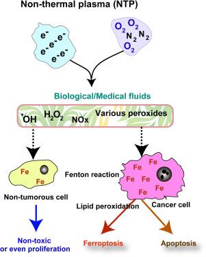 Iron addiction with ferroptosis-resistance in asbestos