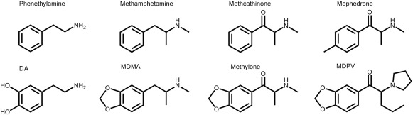 The combined effects of 3,4-methylenedioxymethamphetamine