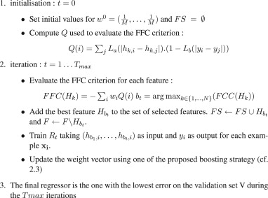 Boosting feature selection for Neural Network based regression